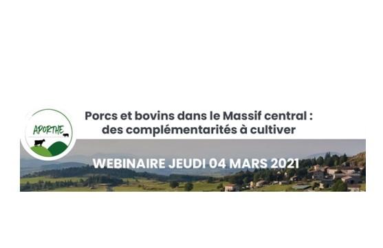 Porcs et Bovins dans le Massif Central : des complémentarités à cultiver